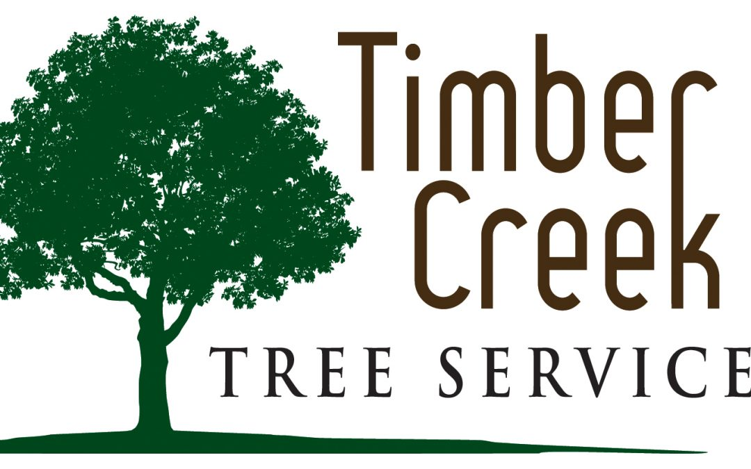 Timber Creek Tree Service LLC